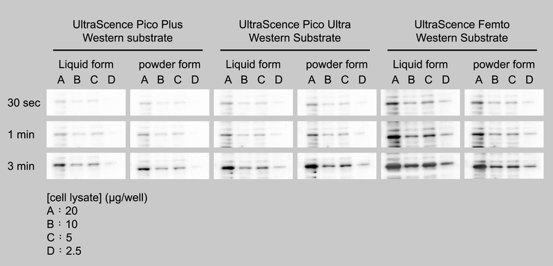 Compare Bio-Helix Liquid form & Powder form ECL performance.